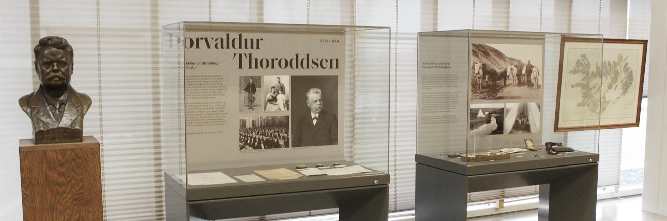 Þorvaldur Thoroddsen